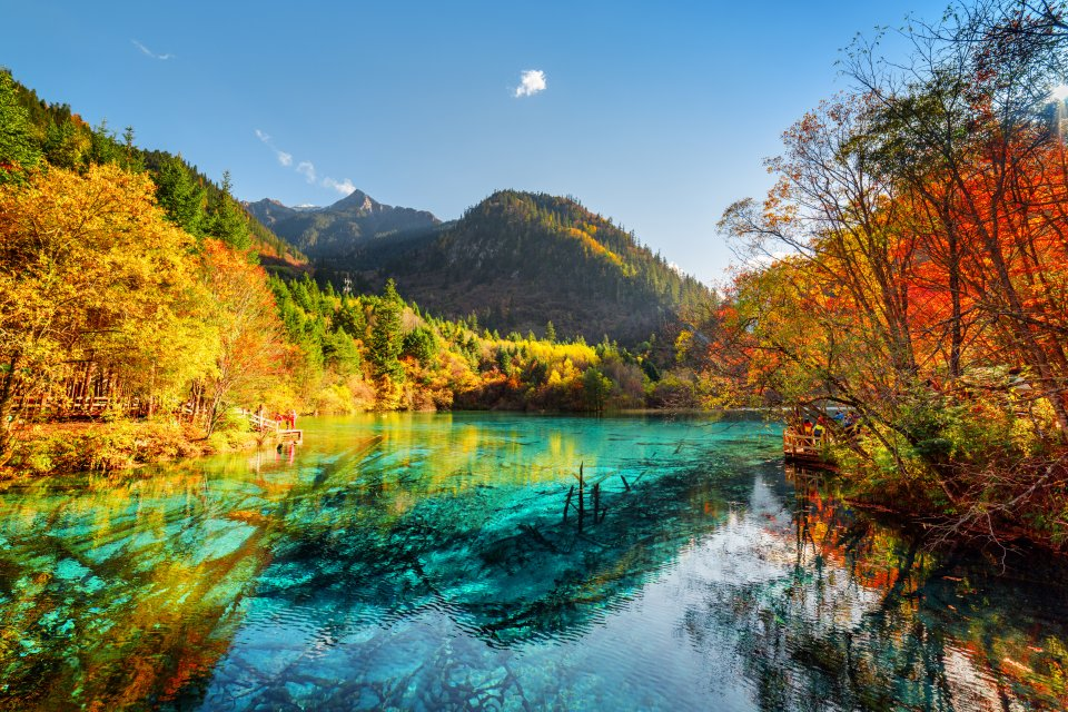 Le lac aux cinq fleurs, Chine