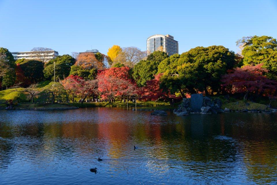 Koishikawa Korakuen Gardens, Tokyo, Japan