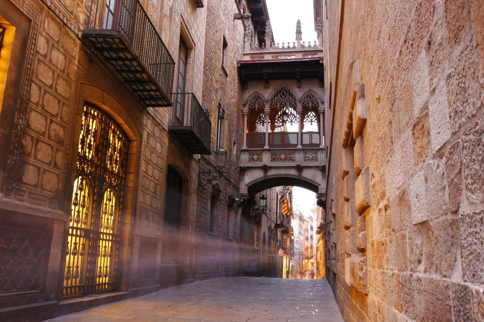 You can explore Barcelona's maze-like Gothic Quarter