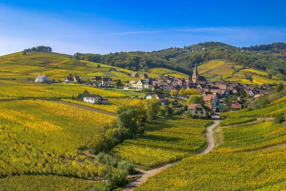 Alsace, Route des Vins- France