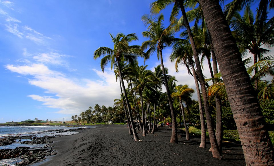 Punalu'u Beach, Hawaii, USA