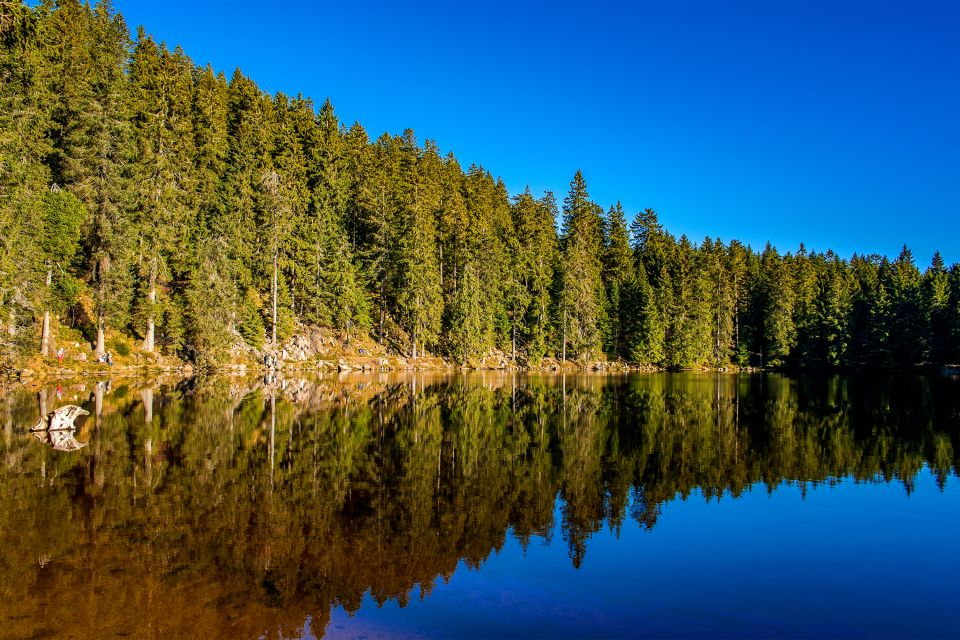 Baden-Wurtemberg , Lago oculto en el bosque , Alemania