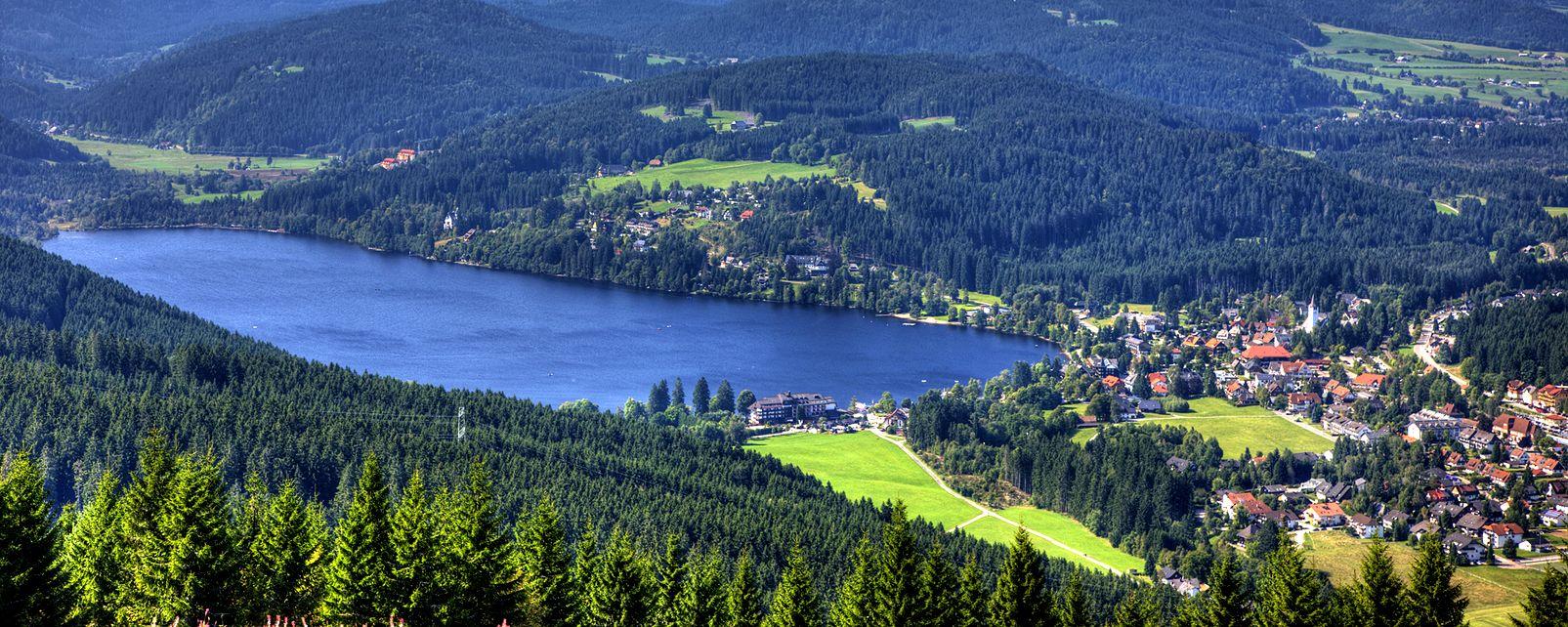 Un village de la Forêt-Noire, La Forêt-Noire, Les paysages, Allemagne