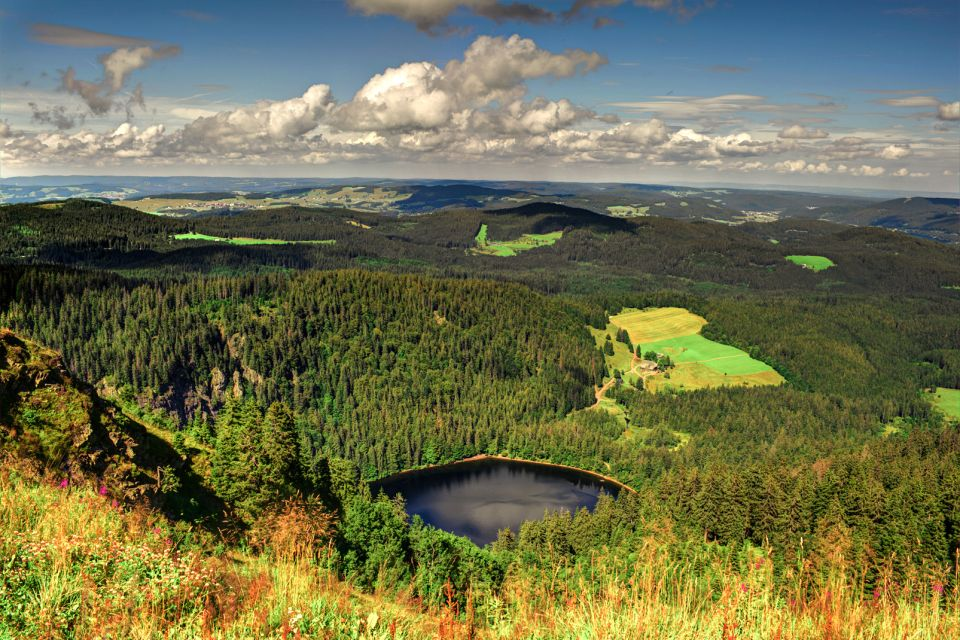 A lake in the Black Forest, The Black Forest, Landscapes, Germany