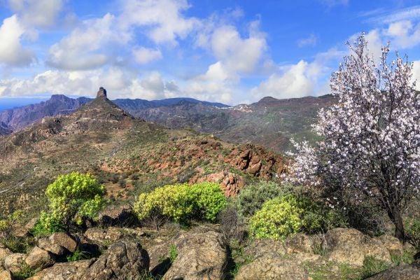 Les paysages, Roque bentayga, las, palmas, gran, canaria, canaries, europe, espagne, océan, atlantique, afrique, grande canarie