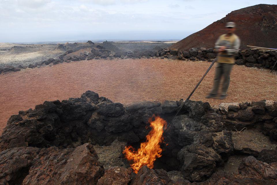 Lanzarote , Le parc national de Timanfaya , Démonstration du pouvoir du volcan , Espagne