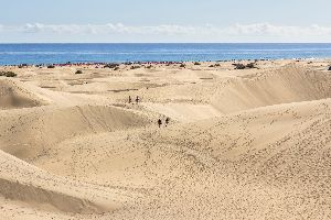 Tenerife playa de las am ricas canarie spagna - Office du tourisme fuerteventura ...