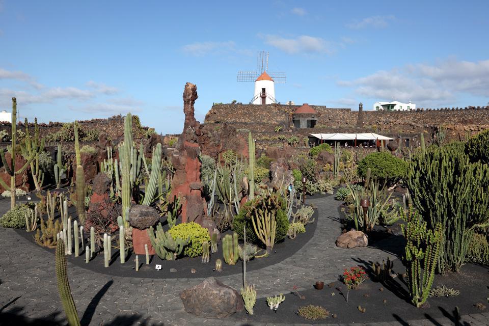 Lanzarote , Le jardin de cactus , Espagne