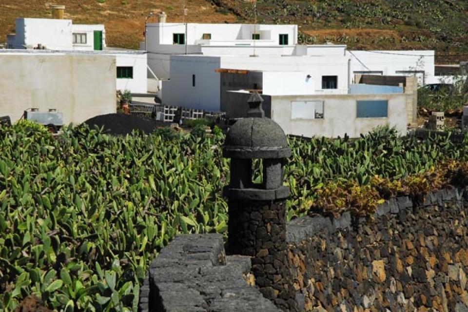 Lanzarote , Le jardin de cactus , La dernière œuvre de césar Manrique , Espagne