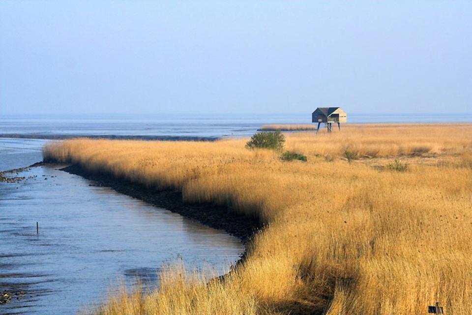 Die Nordsee , Felder an der Nordsee , Deutschland