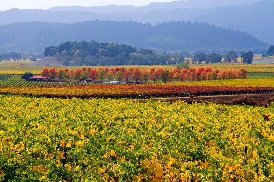 Vendanges dans la Napa Valley, Les vallées viticoles, Les paysages, Californie