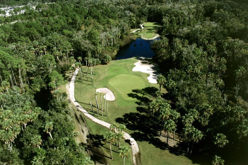 Les collines du nord , Paysage collinaire du nord de la Floride , Etats-Unis
