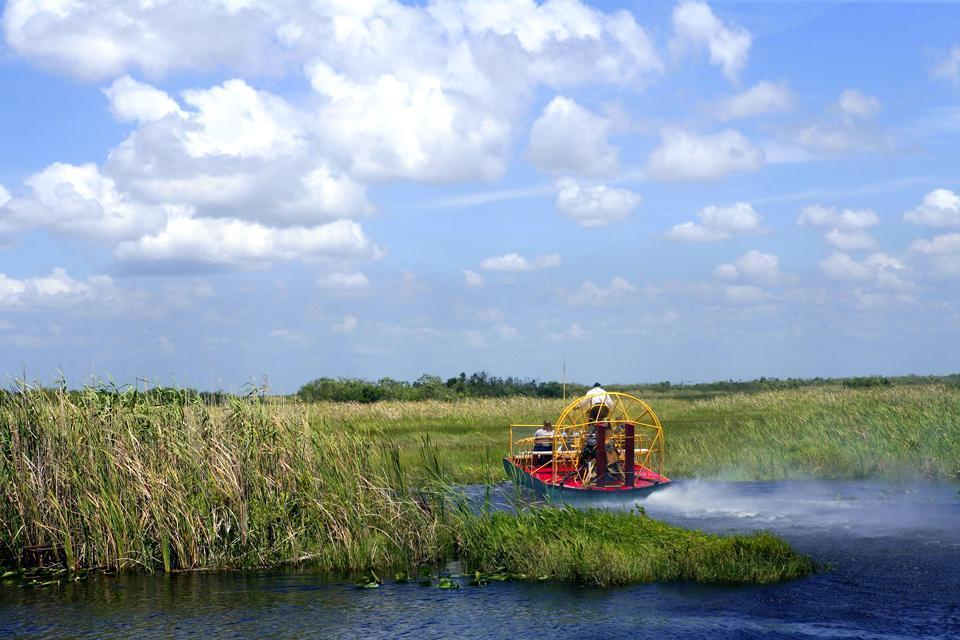 The Everglades , The Everglades, Florida , United States of America
