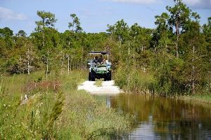 Big Cypress National Reserve , Etats-Unis