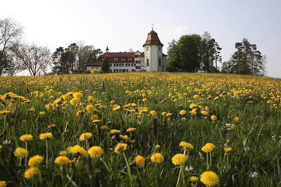 Les routes touristiques culturelles , L'église de la Sainte-Croix à Gottesberg , Allemagne