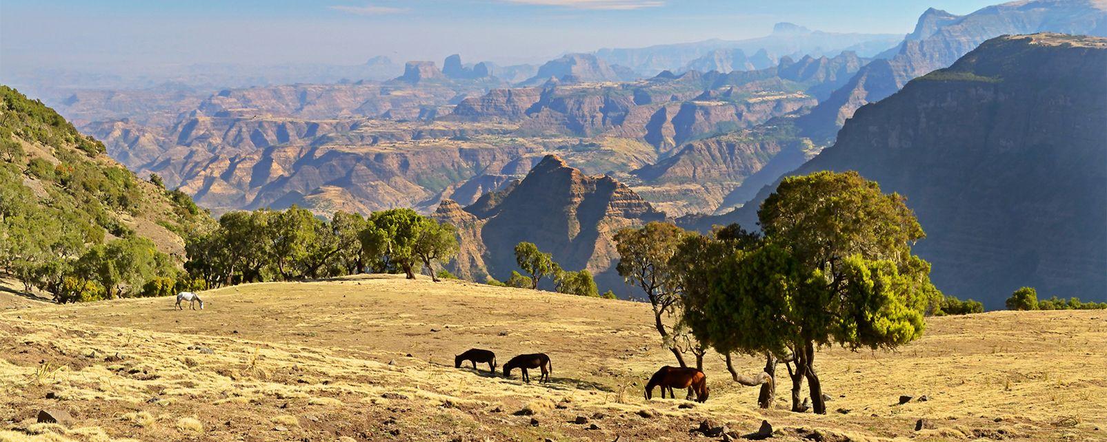 Les montagnes du Simien , Les monts du Simien, Éthiopie , Ethiopie