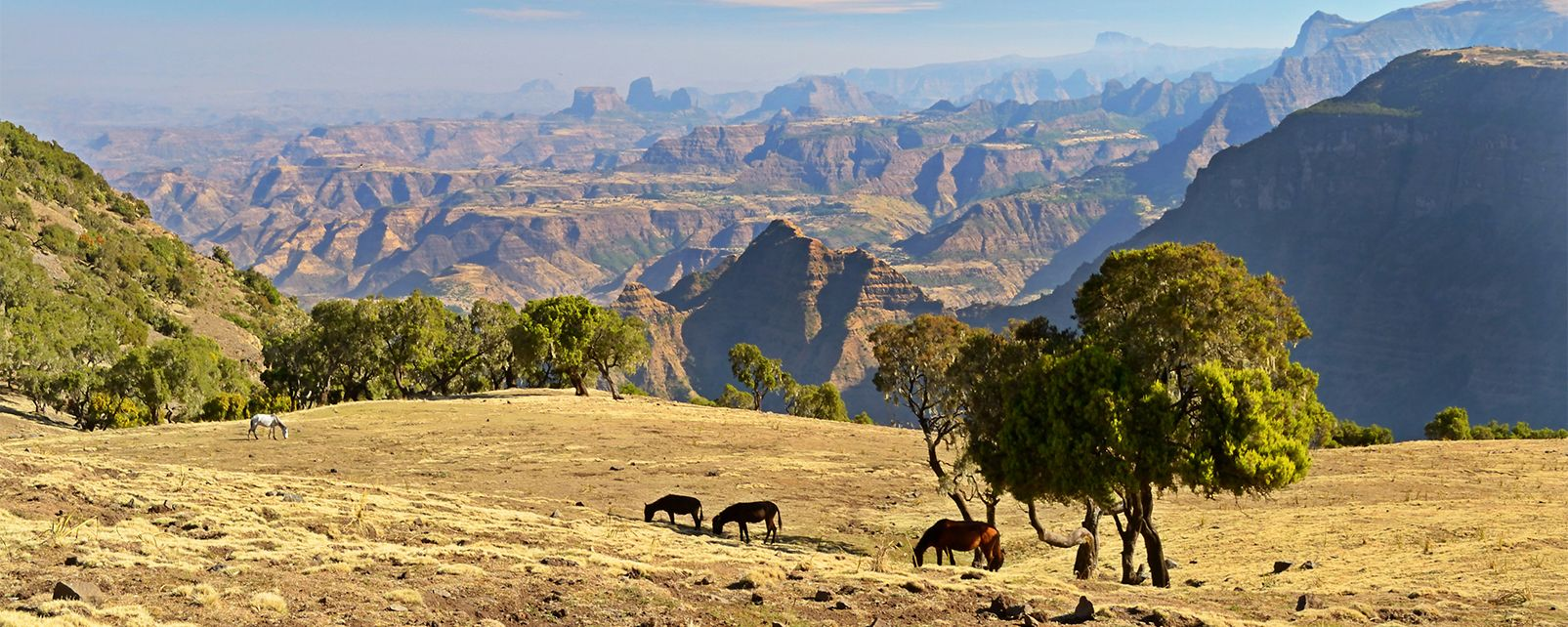 ethiopie-paysage