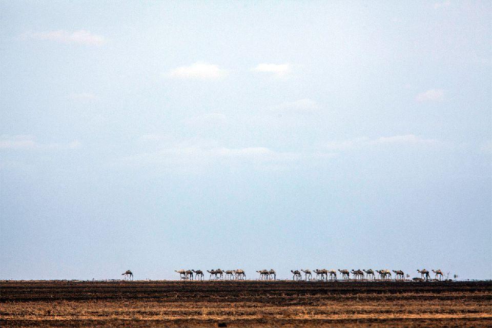 Il deserto di Denakil , Il deserto di Dekil, Etiopia , Etiopia