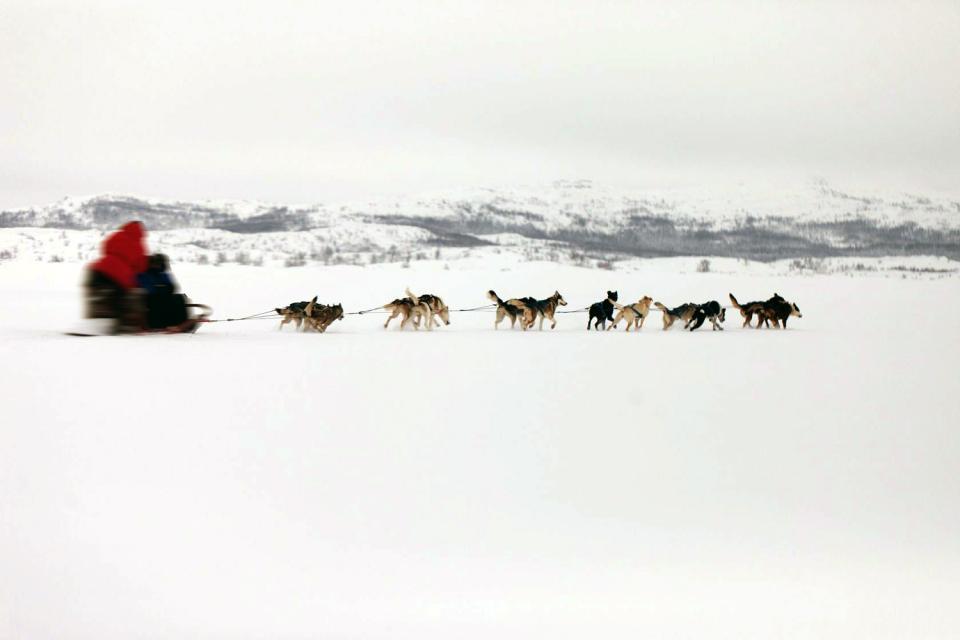 La Laponie , Un manteau blanc , Finlande