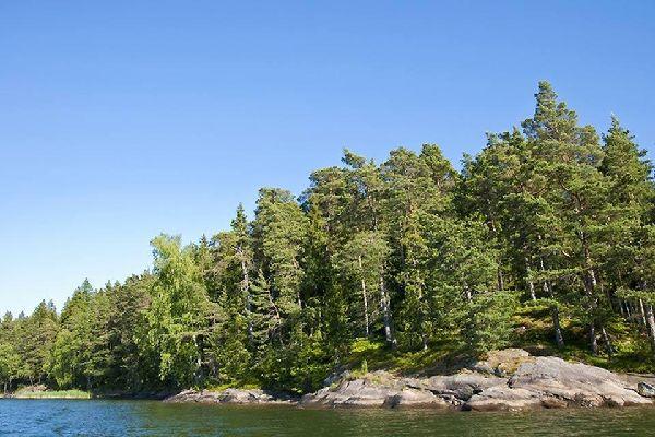 Die Wälder , Finnland