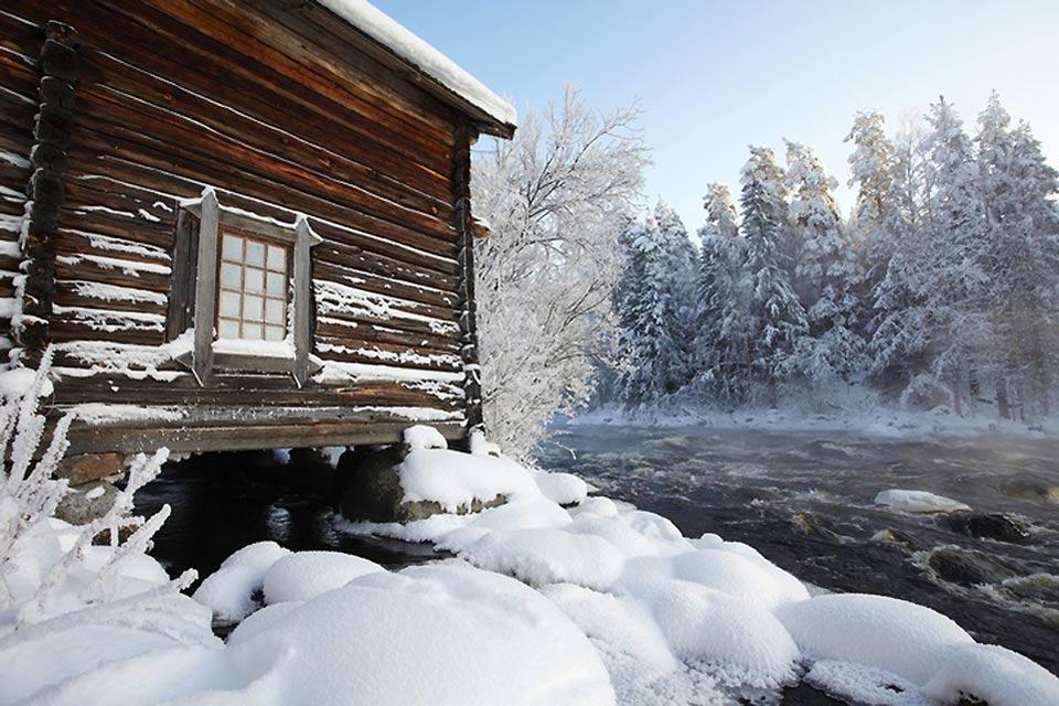 Les forêts , Finlande