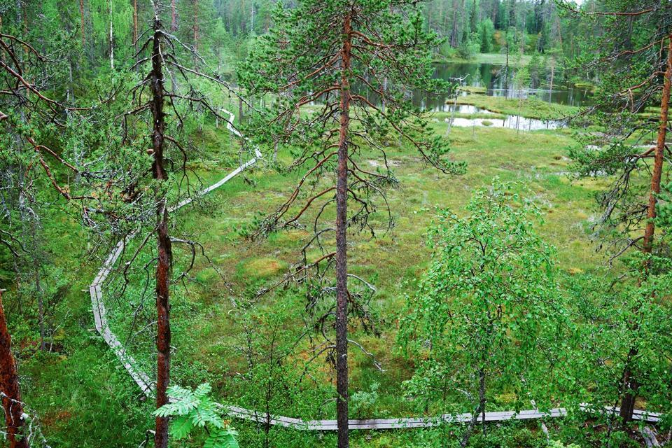 I parchi e le riserve , Finlandia