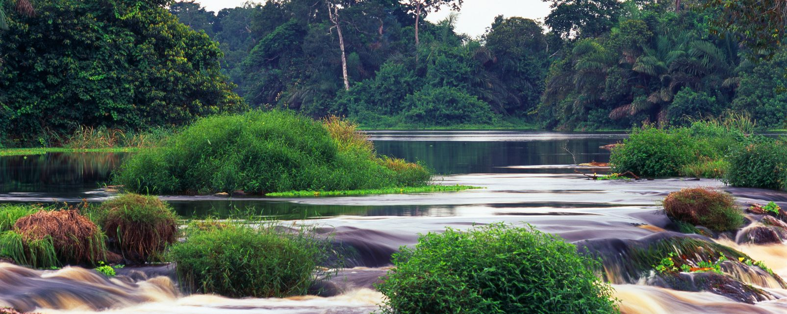Les paysages, lac, gabon, afrique