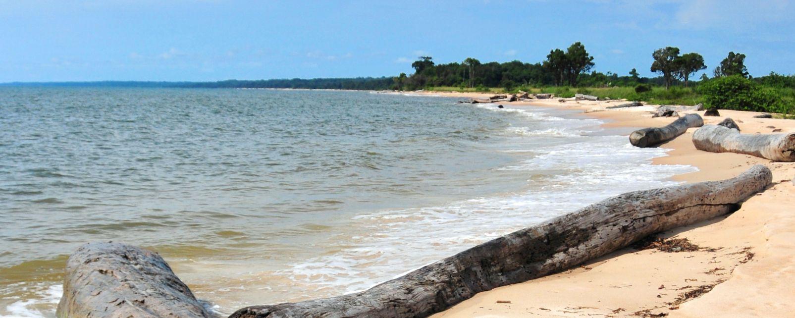 Les côtes, afrique, gabon, côte, océan, littoral, nyonié