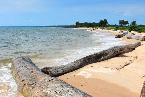 Travel to gabon discover gabon with easyvoyage - Consulat de france port gentil ...