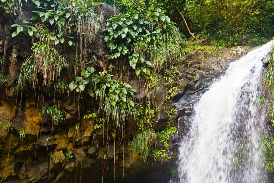 Les paysages, grenade, caraïbes, Antilles, amérique, amérique du nord, forêt tropicale, cascade, chute d'eau, piscine, annadale