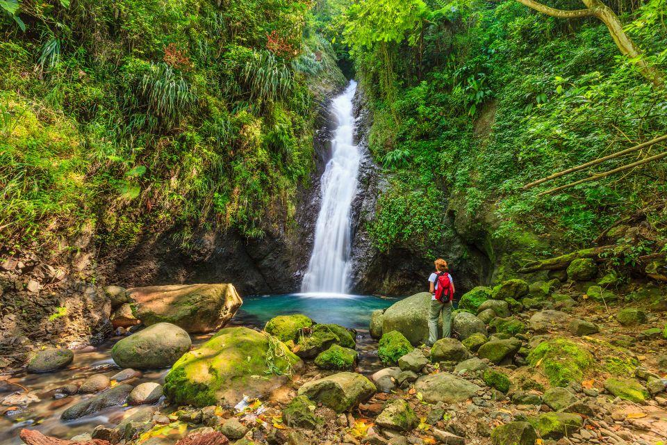 Les paysages, grenade, caraïbes, Antilles, amérique, amérique du nord, forêt tropicale, cascade, chute d'eau, piscine, coin