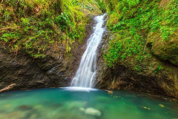 Die Quellen von ?Rivière Salée?, Die Quellen von ?Rivière salée?, Die Landschaften, Grenada