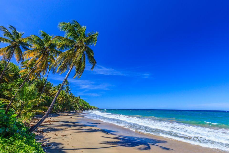 Les côtes, grenade, caraïbes, Antilles, amérique, amérique du nord, forêt tropicale, plage, sauteurs, baie