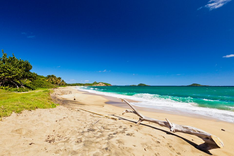 Les côtes, Antilles, Grenade, Caraïbes, mer, plage, amérique
