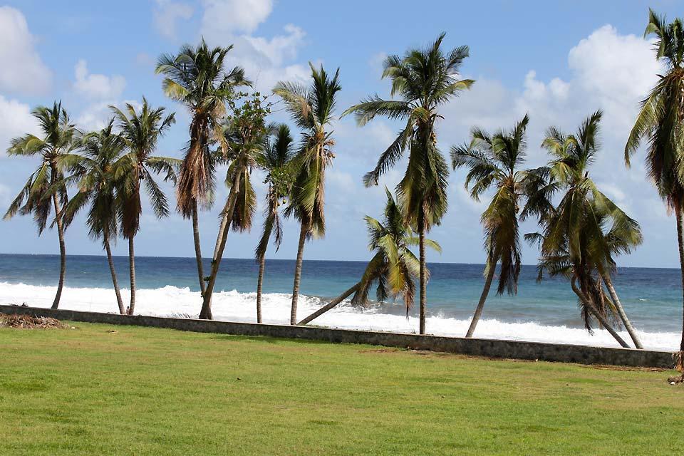 Die Grenadinen , Der Strand von Black Point , St-Vincent und die Grenadinen