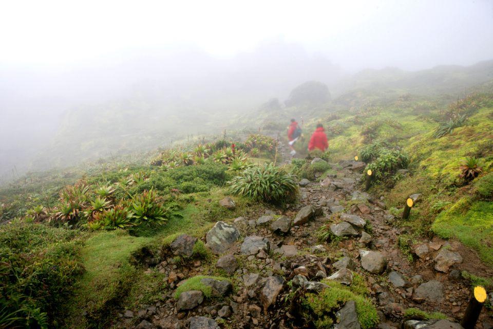 The weather on 'La Soufrière', The Soufrière volcano, Landscapes, Pointe à Pitre, Guadelupe