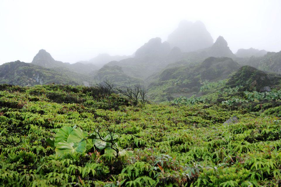 Climbing 'La Soufrière', The Soufrière volcano, Landscapes, Pointe à Pitre, Guadelupe