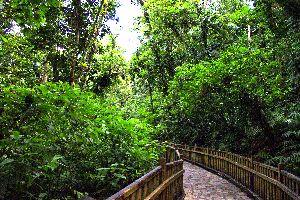 La route de la Traversée , La route de la traversée , Les îles de Guadeloupe
