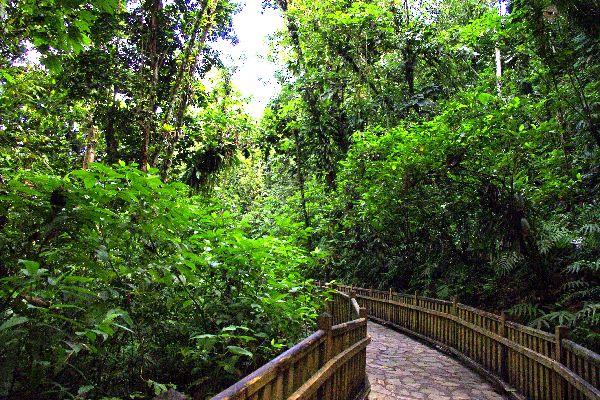 La ruta de la Travesía , La carretera de la travesía , Las ilas de Guadelupe