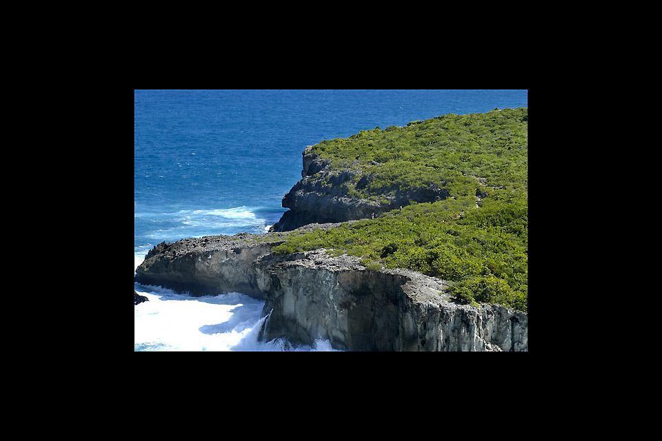 La punta della Grande Vigie (Grande Vedetta) , Grotte della Punta della Grande Vigie , Guadalupa