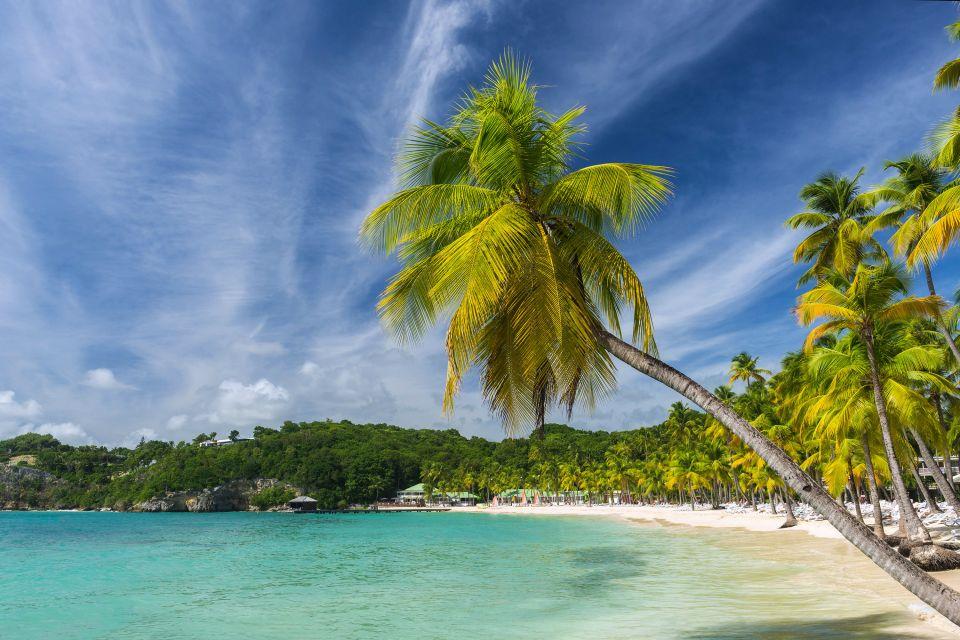 Les côtes, antilles, caraïbes, plage, caravelle, guadeloupe, mer