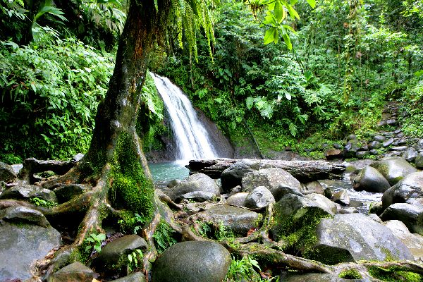 The National Park of Guadeloupe , Guadeloupe National Park , The islands of Guadeloupe