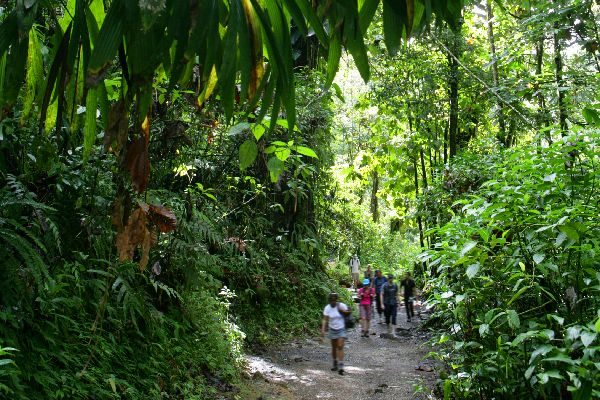 The National Park of Guadeloupe , Biodiversity , The islands of Guadeloupe