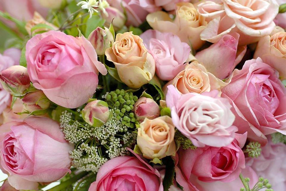 La flora , Un ramo de rosas , Reino Unido