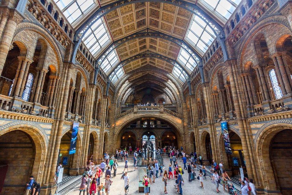 Les musées londoniens , Le Musée d'histoire naturelle, Londres , Royaume-Uni