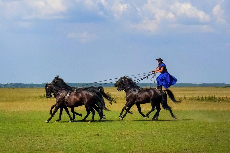 Les paysages, Hongrie, Europe, Puszta, plaine, agriculture, nature
