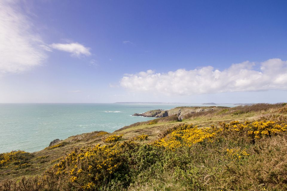 Herm , L'île d'Herm dans les îles Anglo-Normandes , Royaume-Uni