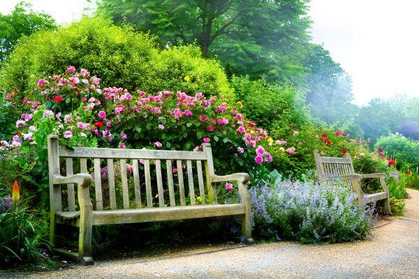 The Guernsey Flower Show , The Guernsey Flower Show, Channel Islands , United Kingdom
