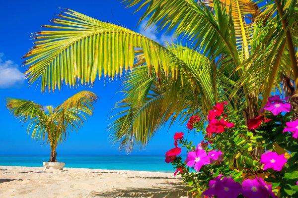 Seven Mile Beach (Grand Cayman) , Iles Cayman