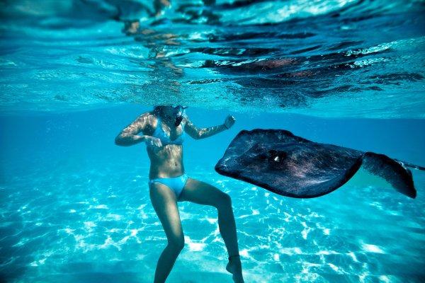 Cayman Brac: , Iles Cayman